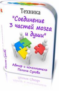 Соединение 3 части мозга