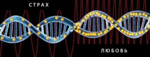Эмоция включает ДНК